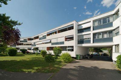 Le Grand-Saconnex Halle, Le Grand-Saconnex Hallenfläche