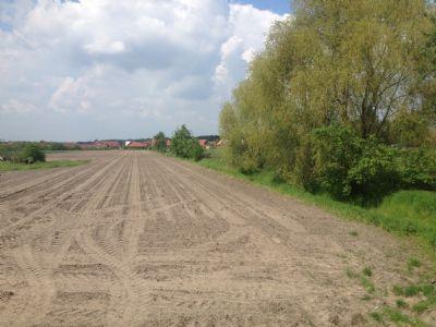 Langlingen Grundstücke, Langlingen Grundstück kaufen