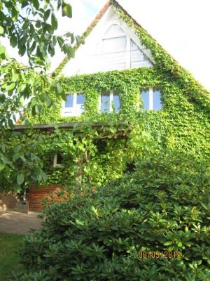 Schermbeck Häuser, Schermbeck Haus kaufen