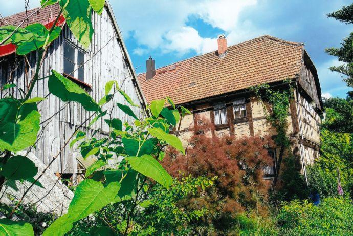 Wohnhaus mit schönem Garten