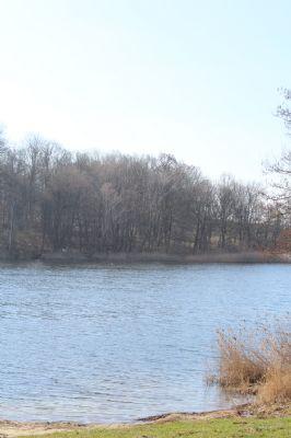 Rarität - See-Waldgrundstück am beliebten Sabinensee Gerswalde