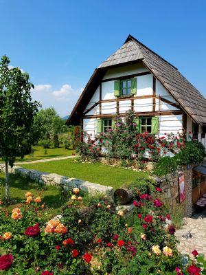 Münstertal Häuser, Münstertal Haus kaufen
