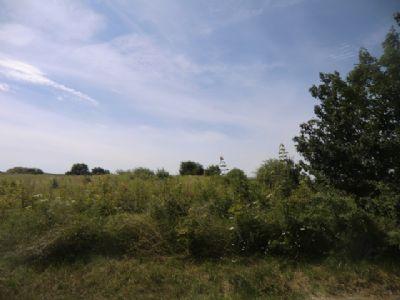 Neumarkt Grundstücke, Neumarkt Grundstück kaufen
