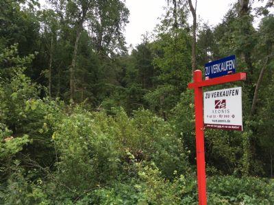 ++ Bauen in Waldnaher Idylle - Grundstück in Ventschau - Finden Sie Ruhe in der Natur ++