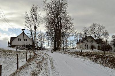 Valdgale Bauernhöfe, Landwirtschaft, Valdgale Forstwirtschaft