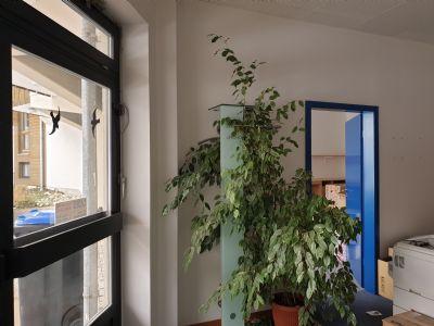 Seeon-Seebruck Büros, Büroräume, Büroflächen