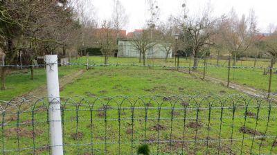 Springe Grundstücke, Springe Grundstück kaufen