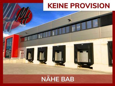 Biebesheim Halle, Biebesheim Hallenfläche