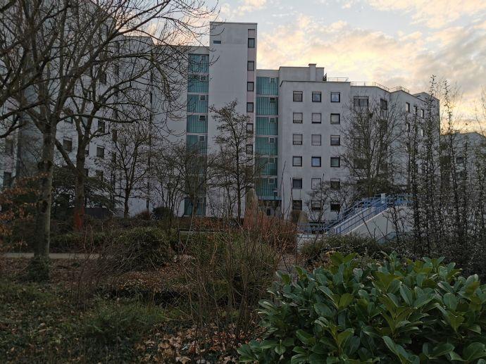 Schöne 3,5 Zimmer Wohnung in herrlicher Lage am Waldrand von Neuhofen