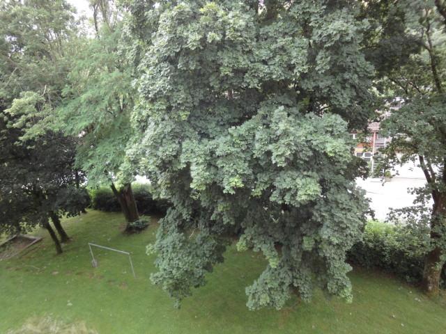 Sonnige und perfekt geschnittene 3 Zimmer Wohnung mit Balkon und Blick ins Grüne in Passau