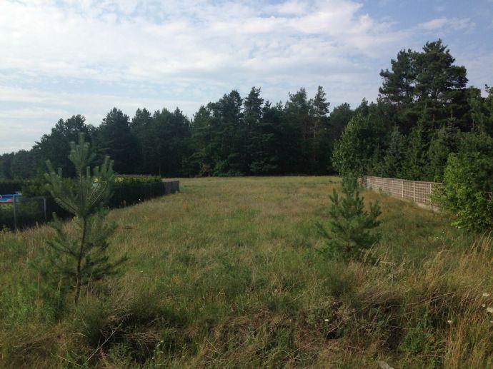 von privat - Baugrundstück mit Blick zum Wald