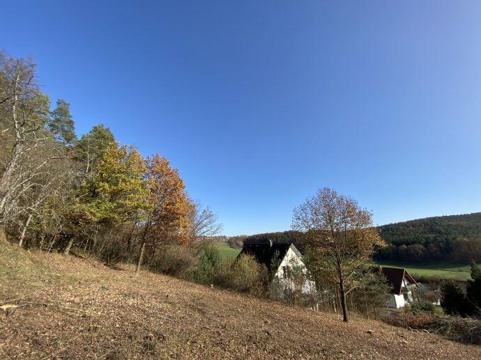 Attraktives Baugrundstück in idyllischer Waldrandlage von Weitramsdorf. Nur wenige km nach Coburg!