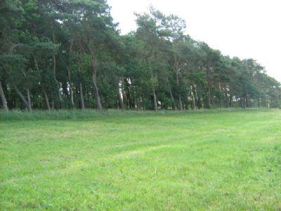 Liebenwalde-Freienhagen Bauernhöfe, Landwirtschaft, Liebenwalde-Freienhagen Forstwirtschaft