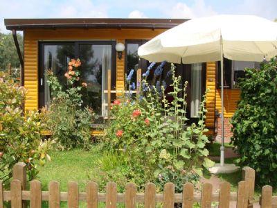 Ferienhaus in Ostercappeln - 646 qm, naturnah, ruhig (# 1601)