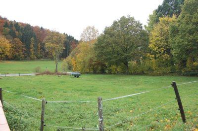 Hohenfels-Essingen Grundstücke, Hohenfels-Essingen Grundstück kaufen
