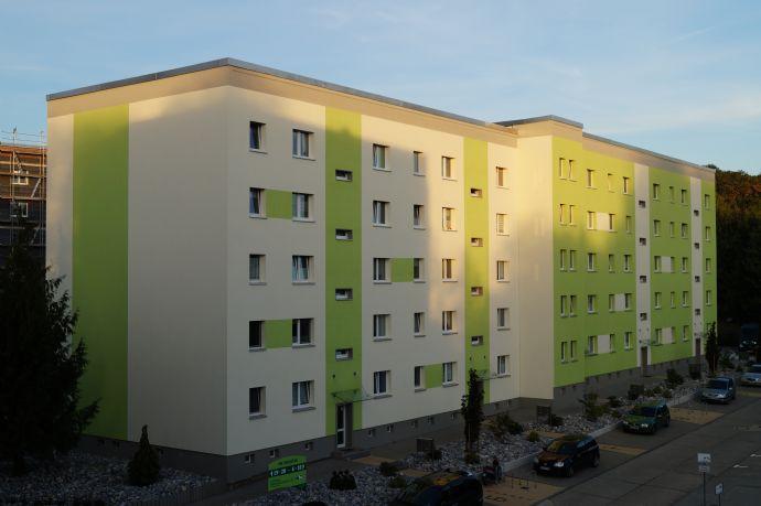 sanierte 3-Raum-WE mit großem Balkon in Waldnähe