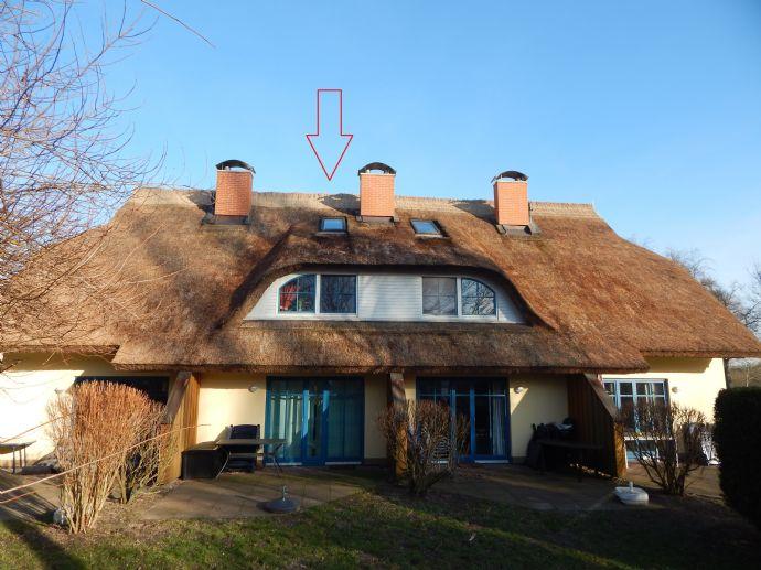 Romantisches 4**** Reetdachhaus zur Feriengästevermietung in Puddemin!
