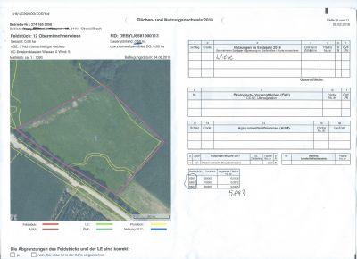 Obersüßbach Bauernhöfe, Landwirtschaft, Obersüßbach Forstwirtschaft