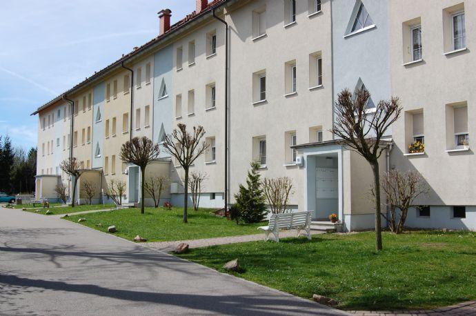 Sehr schöne im Günen gelegene 1-Raum Wohnung in Pretzschendorf