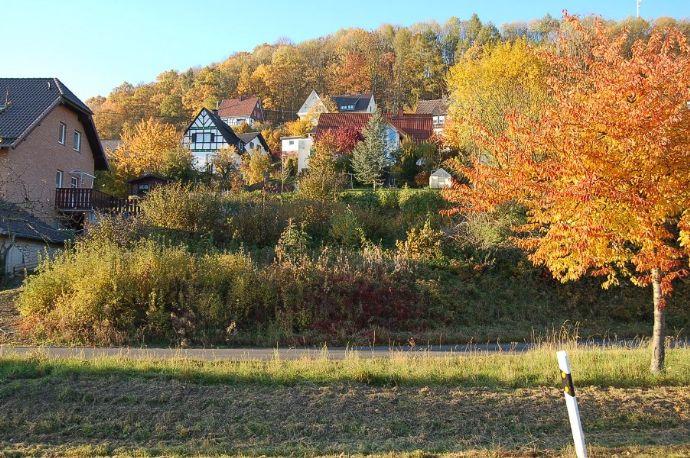Sonnige Aussichten im Naturpark Diemelsee