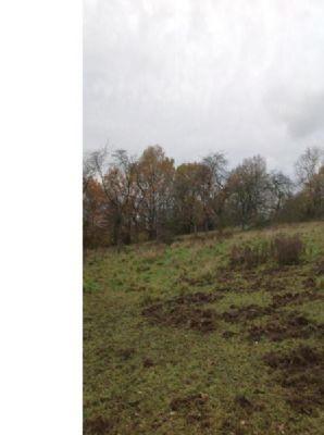 Vallendar Grundstücke, Vallendar Grundstück kaufen