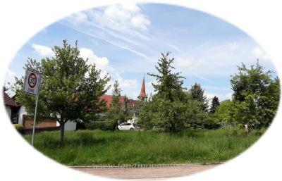 Bauplatz mit schönem Baumbestand (ohne Bauzwang)