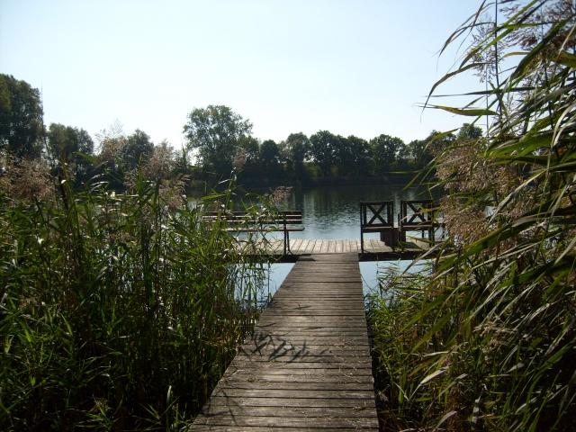Am See wohnen und arbeiten -