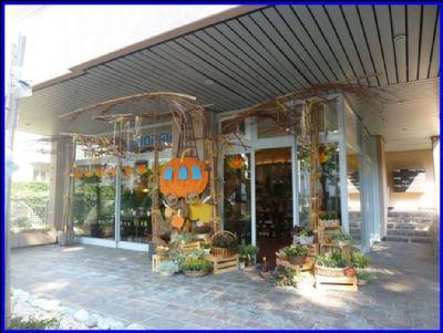 Lugano Ladenlokale, Ladenflächen