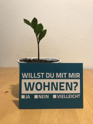 Konstanz WG Konstanz, Wohngemeinschaften