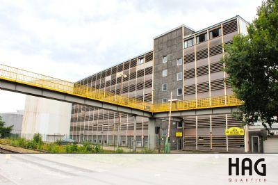 Bremen Halle, Bremen Hallenfläche