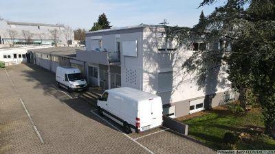 Karlsruhe Halle, Karlsruhe Hallenfläche