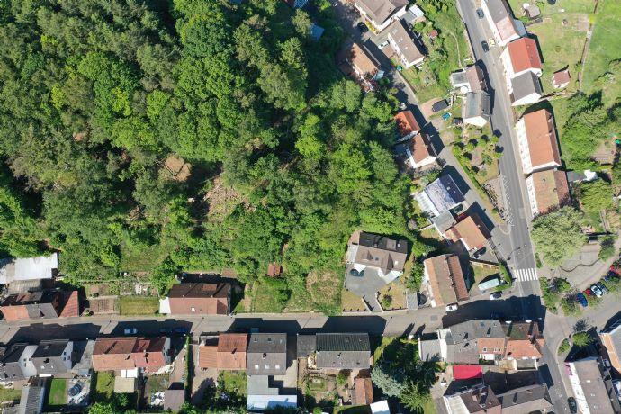 Einzigartige Bauplatz mit eigenem Wald und plateau terrasse in Pirmasens - Niedersimten zu verkaufen