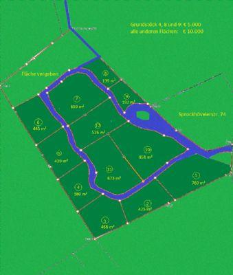 Abstand in grün - Ihre eigene Waldparzelle
