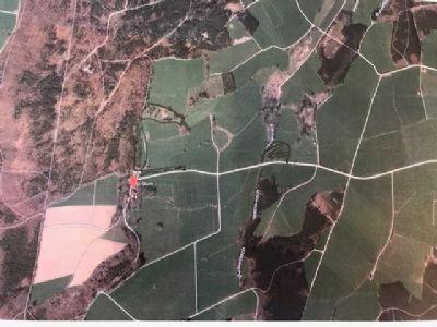Mindelheim Bauernhöfe, Landwirtschaft, Mindelheim Forstwirtschaft