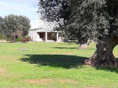 MARUGGIO Häuser, MARUGGIO Haus kaufen