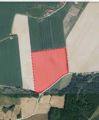 Falkenberg Bauernhöfe, Landwirtschaft, Falkenberg Forstwirtschaft