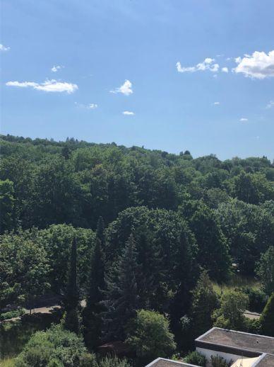 Exklusiver Wohntraum - traumhafter Blick ins Grüne