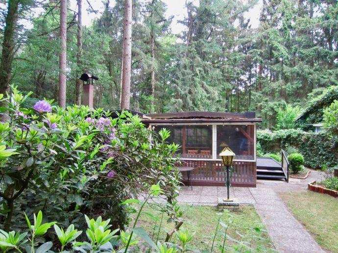 Frisch grundrenoviertes Holzhaus in sonniger Waldlage - am Badesee in Visbek (bei Bremen)