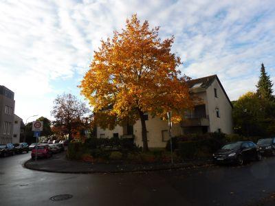 Bonn Garage, Bonn Stellplatz