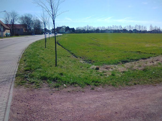 Grundstück mit Potenzial in Halle (Saale), Delitzscher Straße