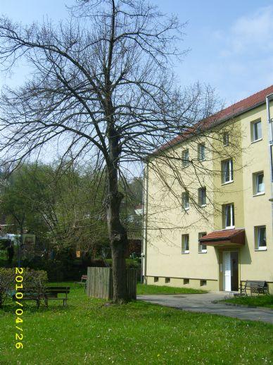3-Raumwohnung, Bergstraße 33, Freital, ab 01.03.2020 zu vermieten