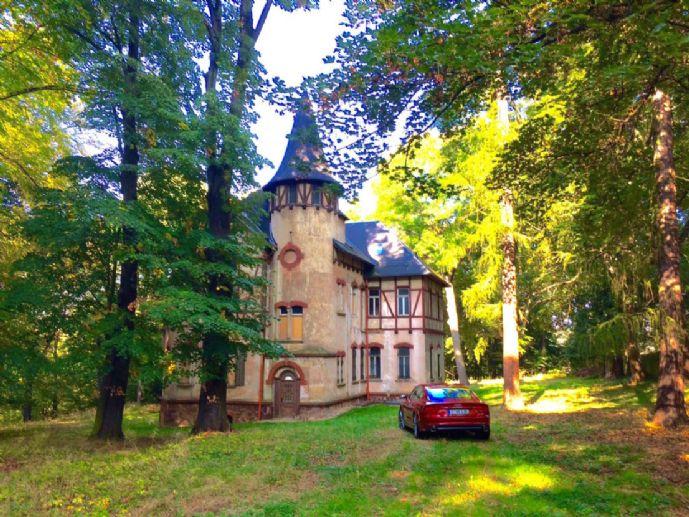 Trübsbachvilla mit Park - Einzeldenkmal
