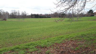 Riesa Grundstücke, Riesa Grundstück kaufen