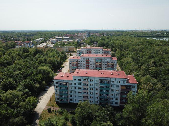 Renovierte 2-Raumwohnung | Balkon | Aufzug | freie Parkplätze
