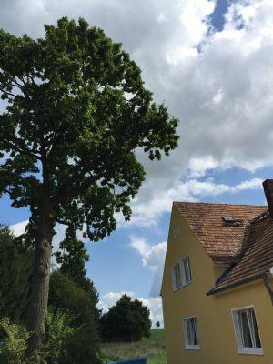 Idylische Lage,EB Küche, Balkon in Jänkendorf