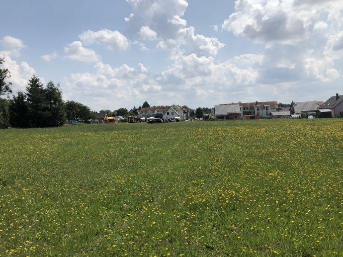 Leben am Waldrand - Haus mit Grundstück!