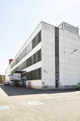 Basel Halle, Basel Hallenfläche