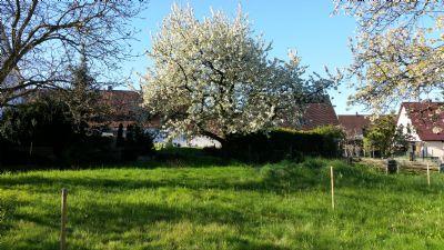 Eckental Grundstücke, Eckental Grundstück kaufen