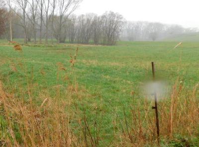 Seelitz Bauernhöfe, Landwirtschaft, Seelitz Forstwirtschaft
