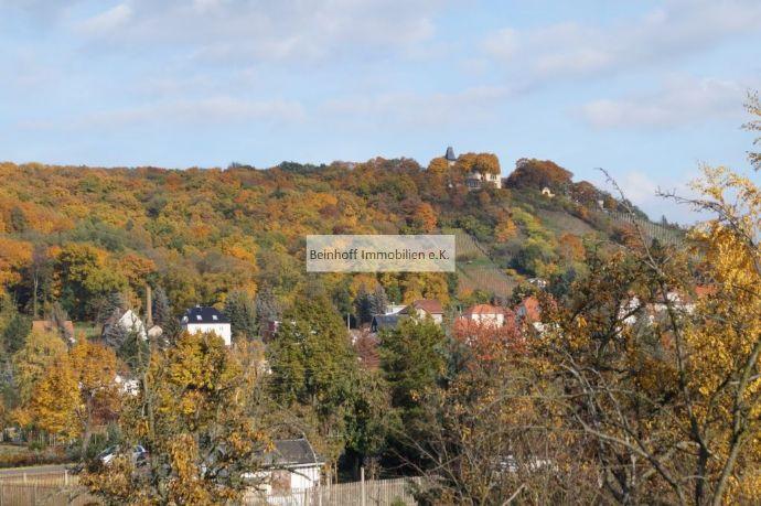 Malerischer Blick auf die Weinberghänge von Radebeul! Eigentumswohnung mit 2 Balkonen!